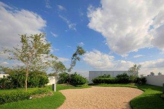 Roof garden (foto: Atmosfera)